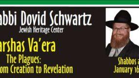 Rabbi Dovid Schwartz