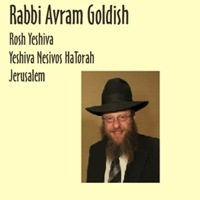 Rabbi Avram Goldish - January 14 - Parshas Shemos