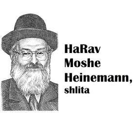 HaRav Heinemann - The Pesach Kitchen in the Hi-Tech Era - Monday March 19 - 7:30pm