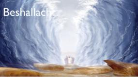 Weekly Parsha: B'Shallach