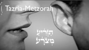Weekly Parsha: Tazria – Metzora