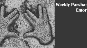 Weekly Parsha:  Emor