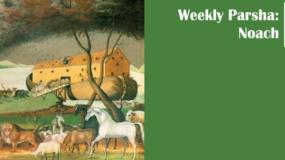 Weekly Parsha: Noach