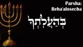 Weekly Parsha: Beha'alosecha